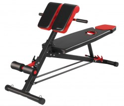 mf-0072-dumbbell-bench